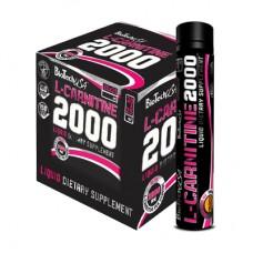 Най-добра цена на BioTech USA L-Carnitine 2000 Ampoules